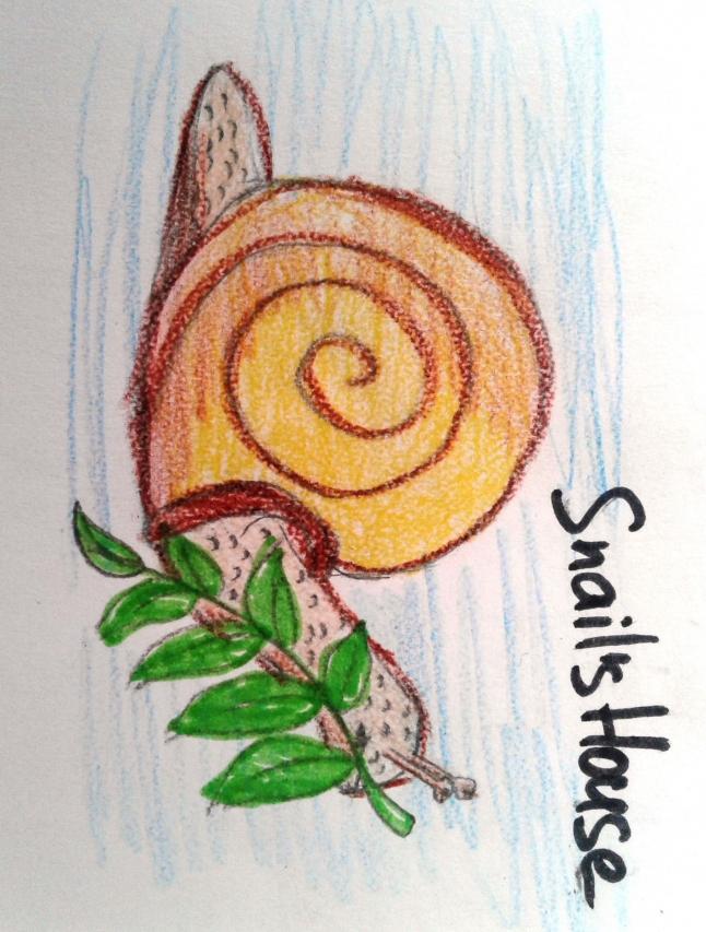 Фото - Snail's House