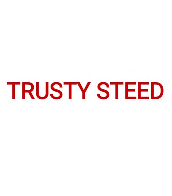 Фото - Trusty steed