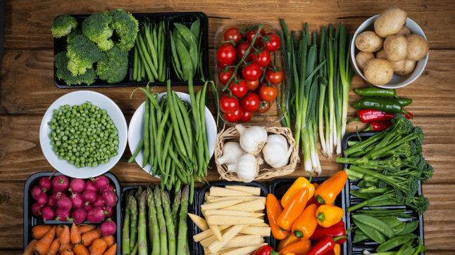 Фото - Оптовая торговля продуктами питания