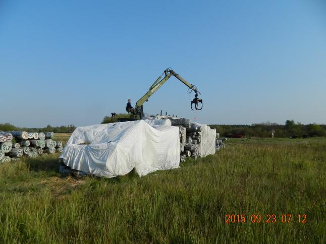 Фото - Добыча и переработка морёного дуба Bog Oak (от 1000м3)