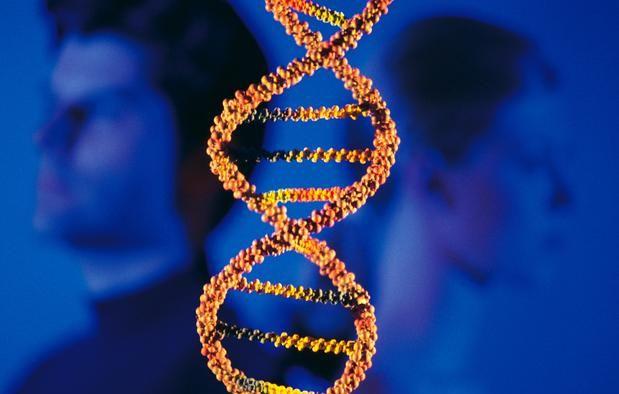 Фото - ДНК знакомства