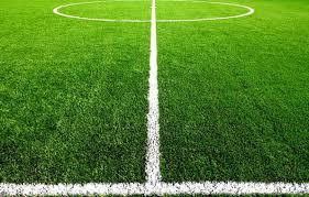 Фото - Строительство футбольного поля с окупаемостью от 1.5 до 3 лет