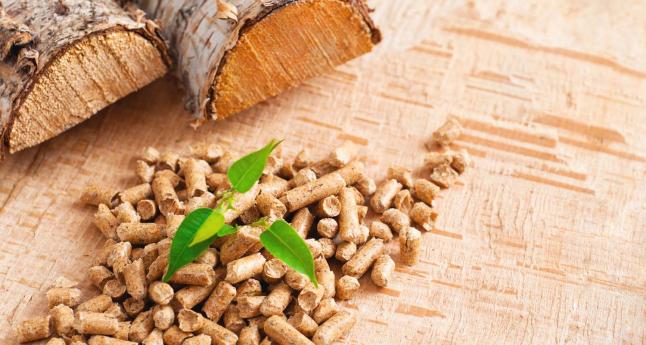 Фото - Производство биотоплива из древесных опилок