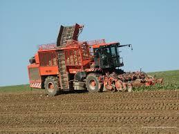 Фото - Оказание услуг в сфере сельского хозяйства