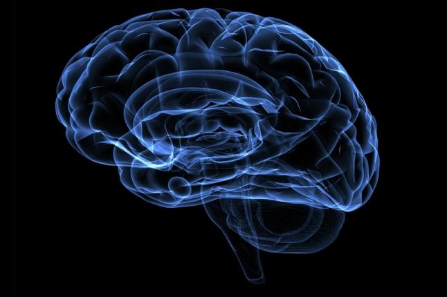 Фото - Нейромаркетинговые исследования